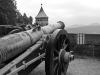 Крепость Кёнигштайн - пушка
