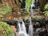Ручей на острове Мадейра