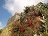 Крепость на острове Мадейра