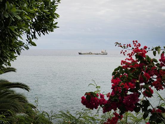 Фуншал - вид на океан